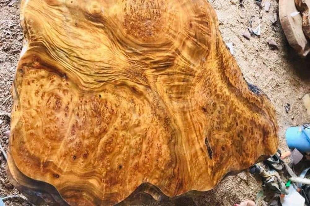 Vân gỗ xá xị rõ nét, đặc sắc